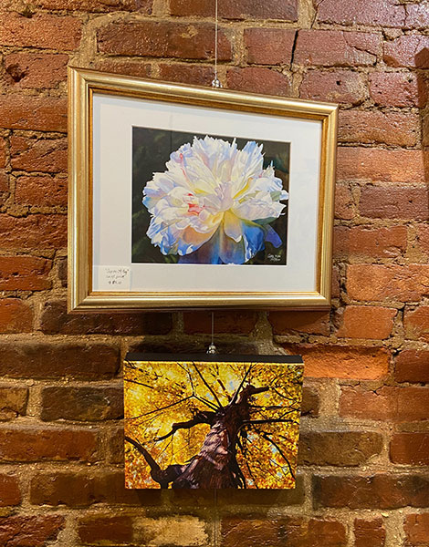 Chestnuts and Pearls Art Gallery - Image 6964